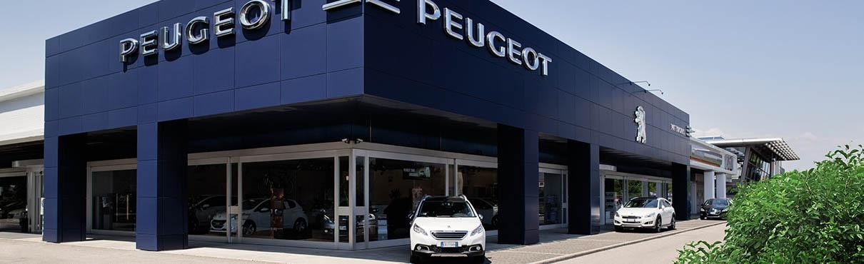 Peugeot professional center