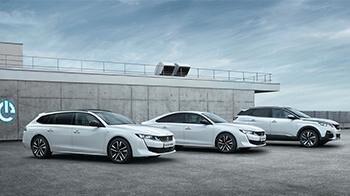 Peugeot Tjänstebilar