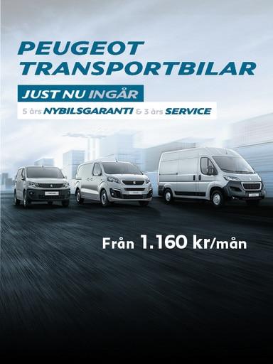 Peugeot TB Range