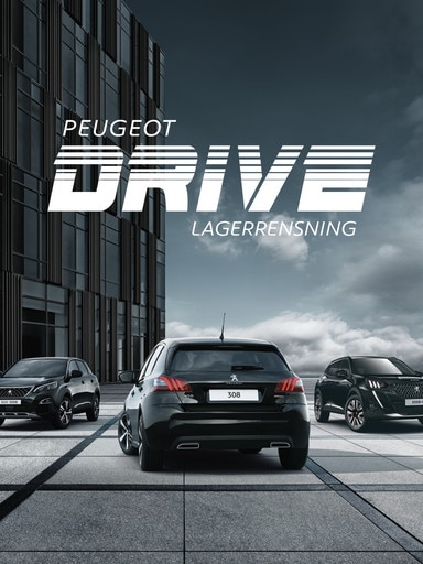 Peugeot Drive Lagerrensning