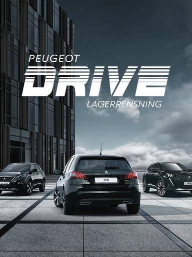 Peugeot Drive Lagerrensning